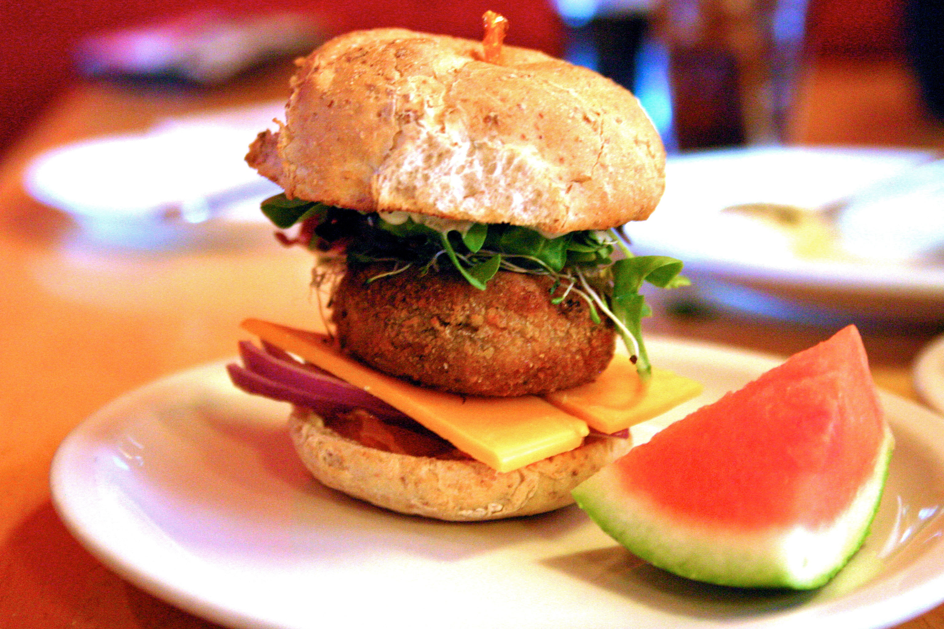 The salmon burger has sharp taste because of the cheddar cheese slices added in it. (credit: Hannah Rosen | Photo Staff)