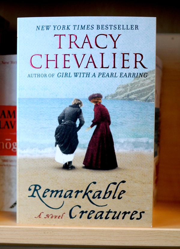 Tracy Chevalier's Remarkable Creatures, published in 2009, follows a 19th century fossil hunter. (credit: Thomas Hofman | Photo Editor)