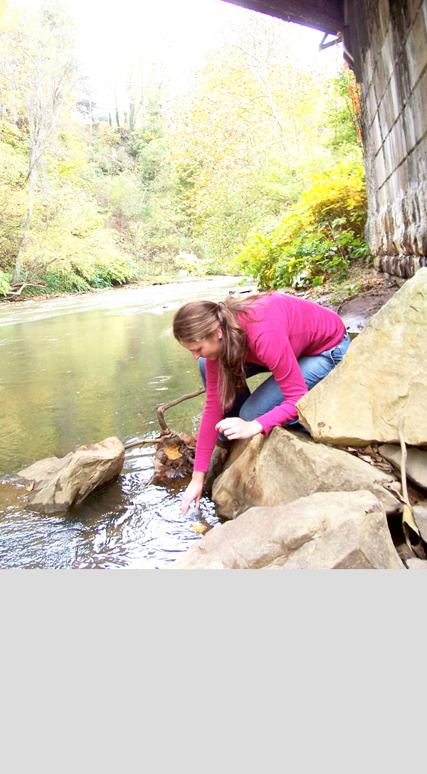 Civil and environmental engineering graduate student Jess Wilson has been sampling water from the Monongahela River and surrounding streams for the past two years. Pictured above, Wilson collects a sample of water from Redstone Creek to be analyzed for its bromide content, among other various pollutants. (credit: Courtesy of Jess Wilson)