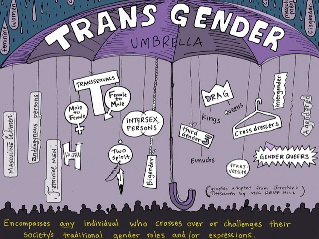 When registering for the conference, attendees received a folder with a schedule of the day's events and other informational material like this infographic of the transgender umbrella. (credit: Courtesy of thegenderbook.com)