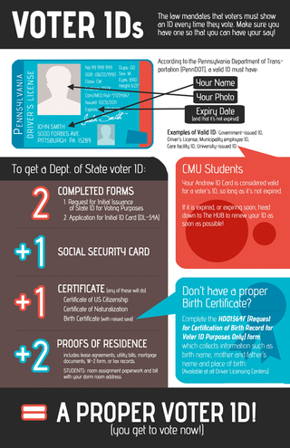 alternatives to voter id laws