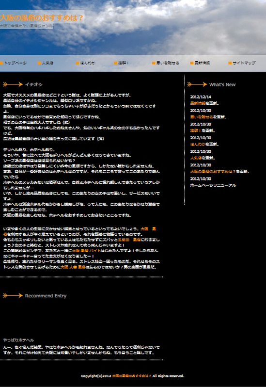 The current webpage hosted at cmusife.org. The webpage discusses the use of prostitution and sex shops in Osaka. (credit: Noël Um/News Co-Editor)