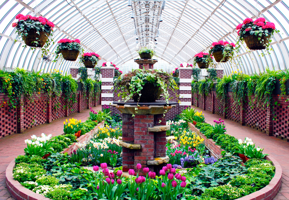 Phipps presents stunning floral display the tartan online the sunken garden room hosts one of the many charming and well executed displays that dhlflorist Choice Image