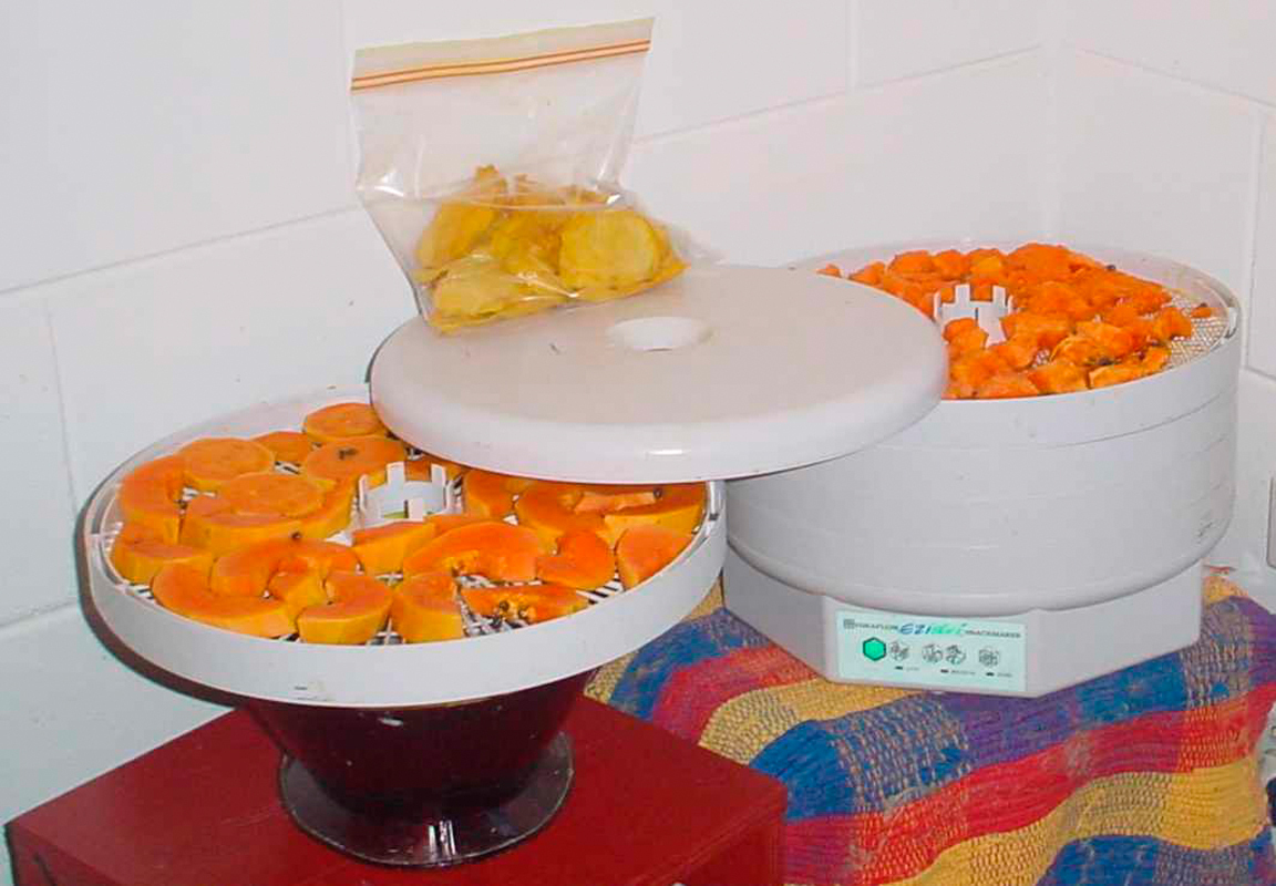 A food dehydrator can be used to create dried foods, such as mangoes and papayas. (credit: Courtesy of Wikimedia Commons)