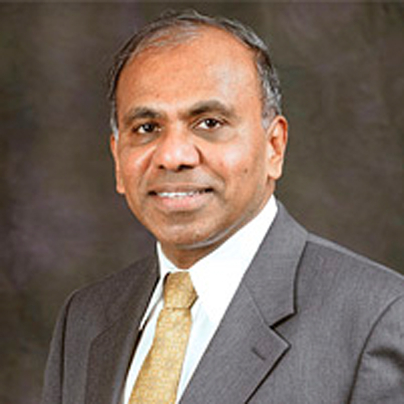 Subra Suresh comes from a background of heavy involvement in materials sciences. (credit: File photo)