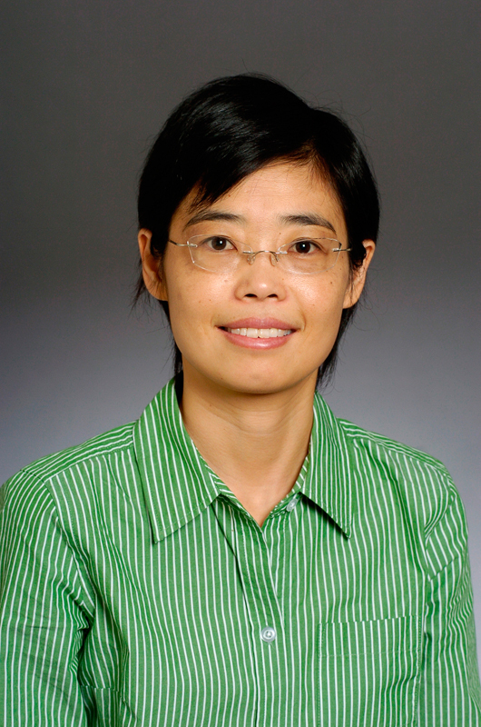 Jessica Zhang, a professor of Mechanical Engineering, recently won the PECASE award for her work with computer analysis of boats.
