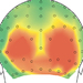 The locations on the back of the scalp where visual areas gave strong electrical responses to familiar images.