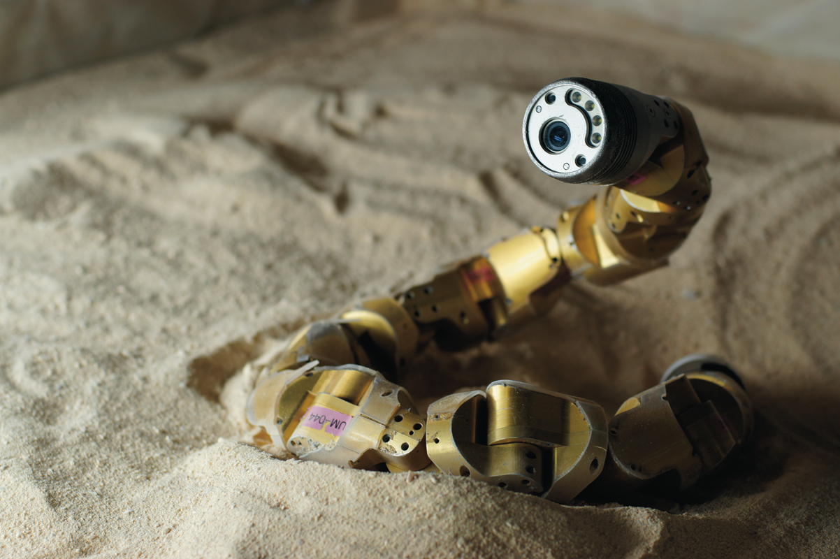 Carnegie Mellon researchers mimic the locomotion of sidewinder rattlesnakes in modular snake robots.  (credit: Hamid Marvi)