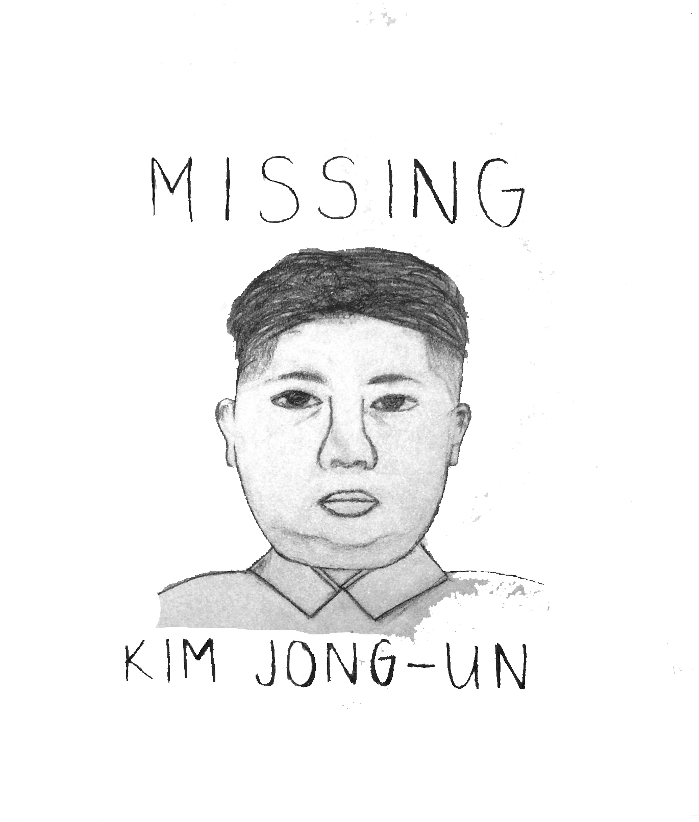 Speculation about Jong-un is useless (credit: Alison Chiu/Advertising Staff Member)