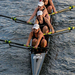 The Women's varsity crew club rows in the Charles.
