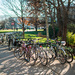 The removal of bike racks around campus has prompted many to question Carnegie Mellon's dedication to biking culture on campus, while many improvments around the city indicate that it will soon be a better place to bike.