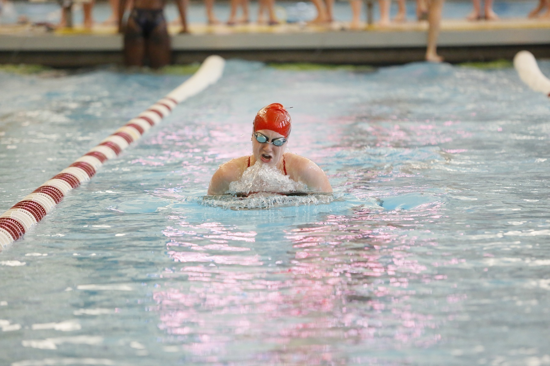 Swimming and Diving takes on national championships