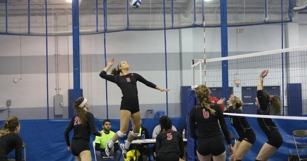 The volleyball team set up a spike against Washington University in St. Louis. The Tartans won the game. (credit: Courtesy of CMU Athletics)