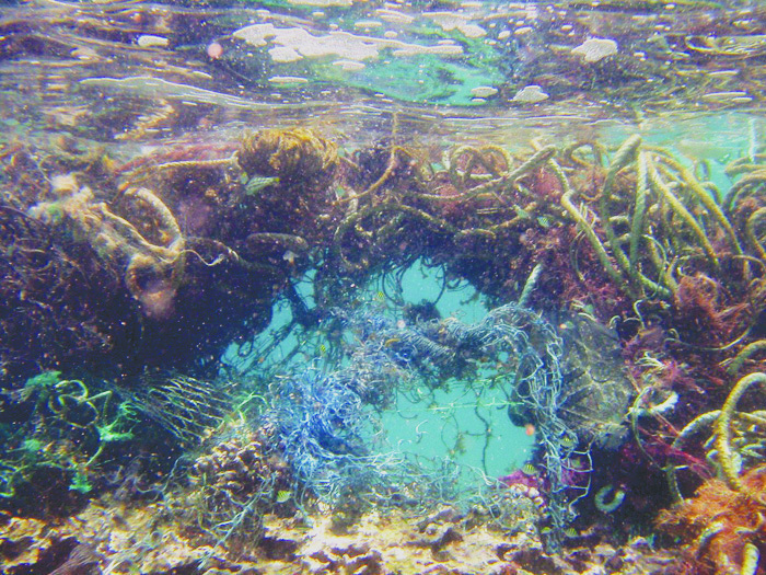 Over two tons of land debris was collected from Laysan and Lisianski islands as a part of the multi-agency removal effort coordinated by the NOAA Pacific Islands Fisheries Science Center for the Northwestern Hawaiian Islands Marine National Monument. Plastic waste forms a huge part of the debris collected and it irreparably harms the coral reef and marine life in these ecosystems. (credit: Courtesy of NOAA)