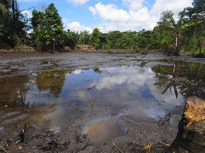 Pollution in the Lago Agrio oil field was just a small portion of the devesation caused by Texaco's operations in Ecuador. (credit: Courtesy of Julien Gomba via Wikimedia Commons)